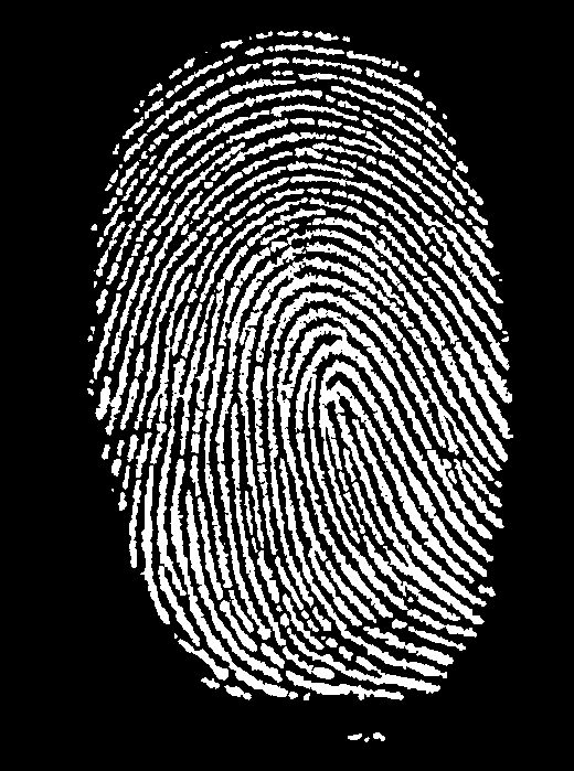 fingerprint_invert
